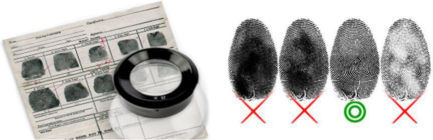Fingerprinting Record Cards