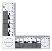 ABFO No. 2 Scale