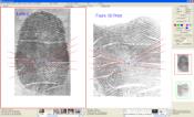 Magnifier Software CSIpix® Comparator